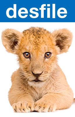 Imagen de apoyo de  Desfile : Enciclopedia sonora de animales
