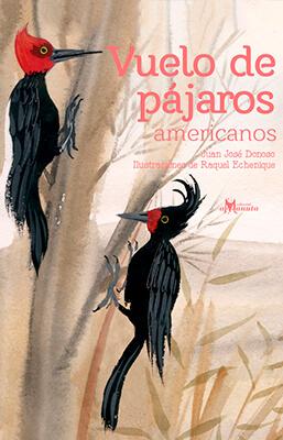 Imagen de apoyo de  Vuelo de pájaros americanos